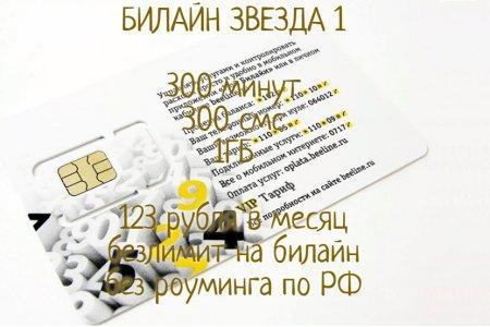 Билайн ЗВЕЗДА 1 за 123 руб./мес.